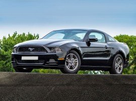 Ford Mustang 14